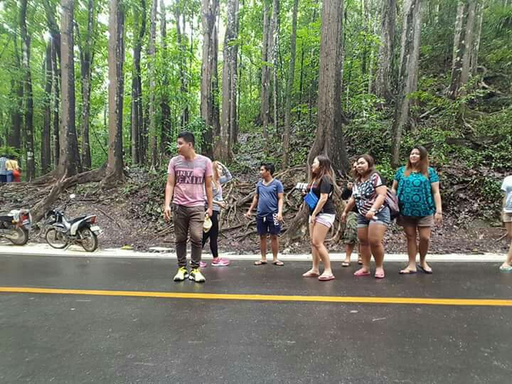 Because cars are approaching, we have to keep an eye before we can have a decent picture hahaha #famousmanmadeforest #bohol #travels