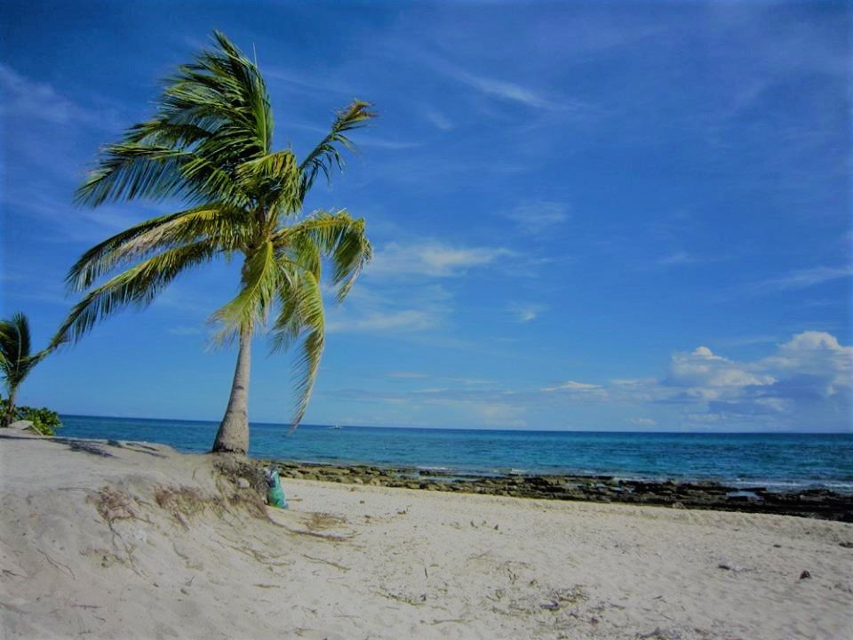coconut tree feat white sands feat blue sky feat white clouds