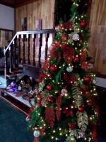 Christmas tree at house
